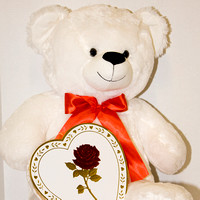 Valentine's Day Teddy and Candy 2016-1131